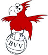 Brandenburgischer Volleyball-Verband (BVV)
